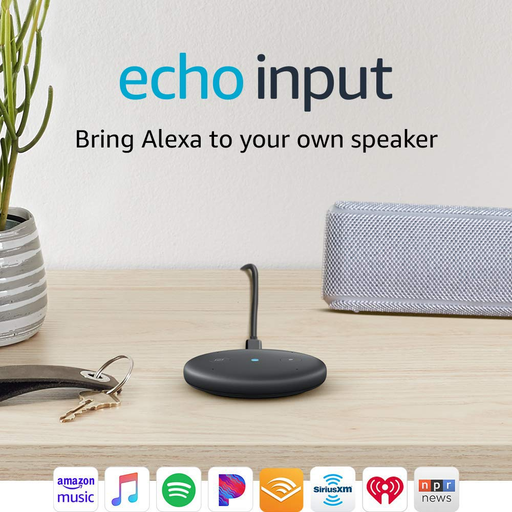 echo input seen right next to a speaker and a keychain